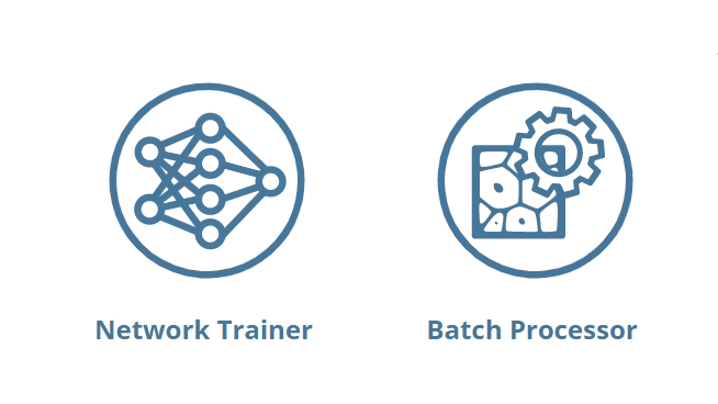 Network Training and Batch Processor